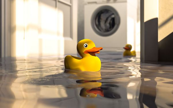 rubber ducks in a flooded house