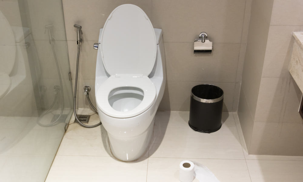 clean toilet bad smells