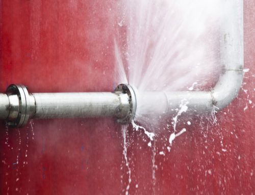 What to Do if You Have a Pipe Burst in Your Wall