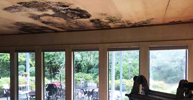 Water Damage in the home
