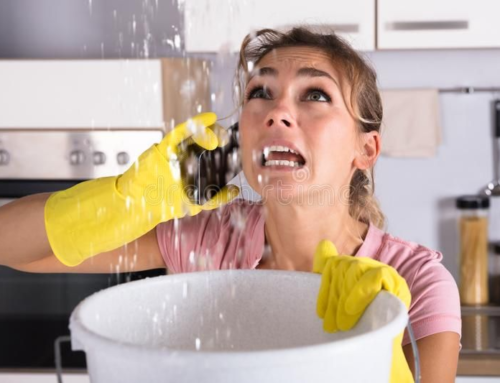 What to Ask Before Choosing a Plumber